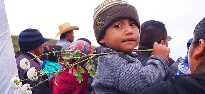 an analysis of the refugee crisis in central america The worst refugee crisis since wwii: how america can and syria to urban streets in central america at the front lines of the global refugee crisis need.